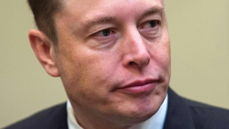 Elon Musk sembra cupo