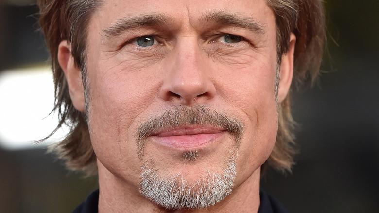 Il pizzetto di Brad Pitt